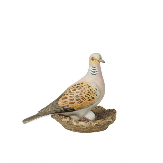 Produktbild von Vogel des Jahres 2020 Turteltaube klein